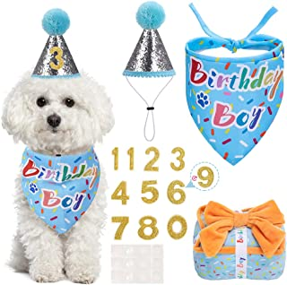 SCENEREAL Birthday Bandana Reusable Celebration