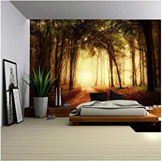 wall26 - Pathway in a Forest with an Orange Glow - Wall Mural, Removable Sticker, Home Decor - 100x144 inches