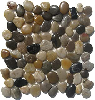 Mixed Natural River Rock Pebble Tile / 10 Sq Ft