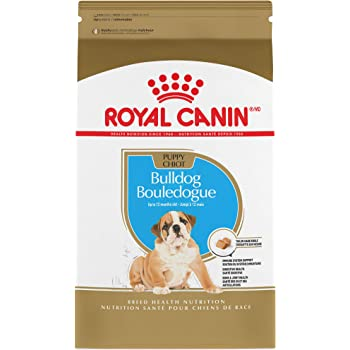 Amazon Com Royal Canin Bulldog Puppy Breed Specific Dry Dog Food 6 Lb Bag Pet Supplies