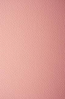 10 arkuszy koloru łososiowego 220 g karton gliniany jednostronnie strukturalny DIN A4 210 x 297 mm pryzma salmone karton t...