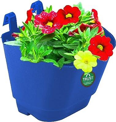 TrustBasket Set of 50 Vertical Gardening Plastic Hanging POTS/PLANTERS (Blue) - Small