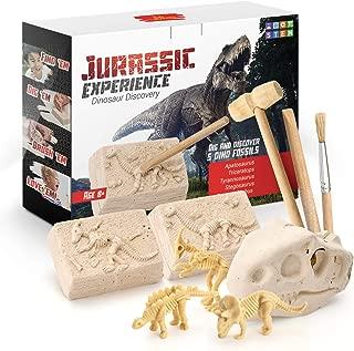 Kid Labsters Jurassic Experience Dinosaur Discovery - Dinosaur Fossil Digging Game Kit w/ Triceratops & Tyrannosaurus Rex Skeleton Toys & Tools - Kids Dino Sandbox Activity Set