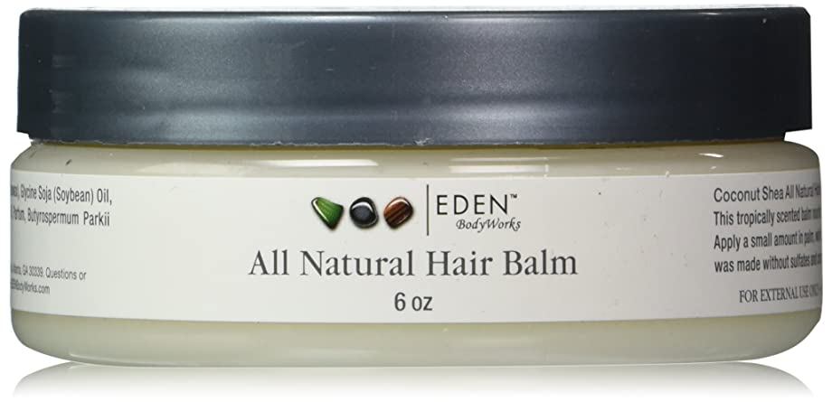 治安判事ピット海峡EDEN BodyWorks Coconut Shea Hair Balm 6oz by Eden [並行輸入品]