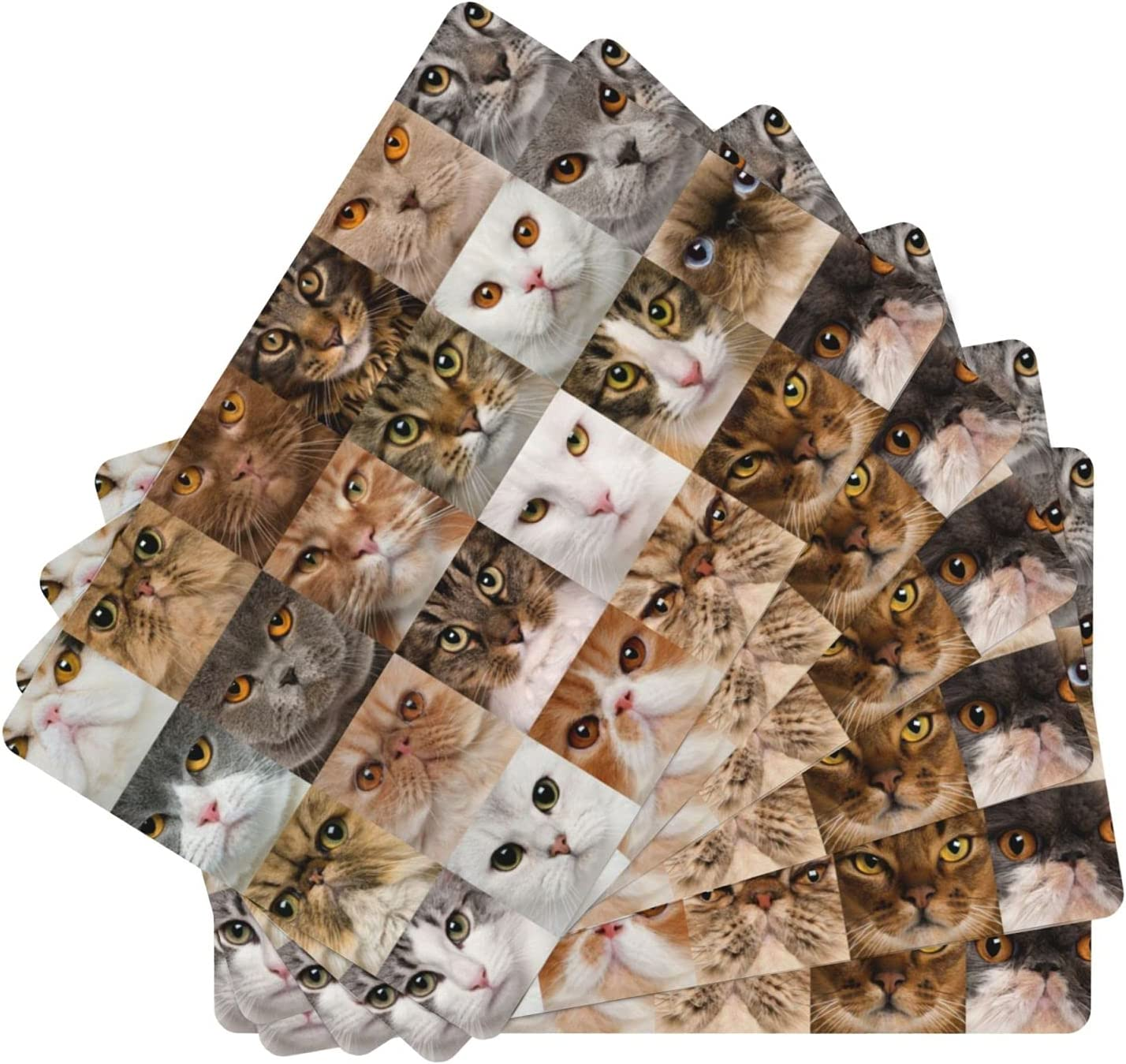Attention brand Portrait of Genuine Various cat Placemat Leather 6 Eas Set Table Mats