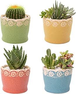 DAFFBOX 3.9 Inch Ceramic Succulent Pots Set, Small Pots for Plants Flower Cactus Planter with Drainage Hole for Indoor Hom...