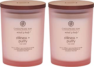 Best rose all day candle Reviews