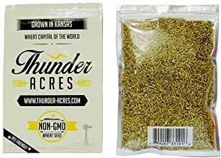 Non-GMO, Thunder Acres Premium Wheat Seed, Cat Grass Seed, Wheatgrass, Hard Red Winter Wheat (10 lbs.)