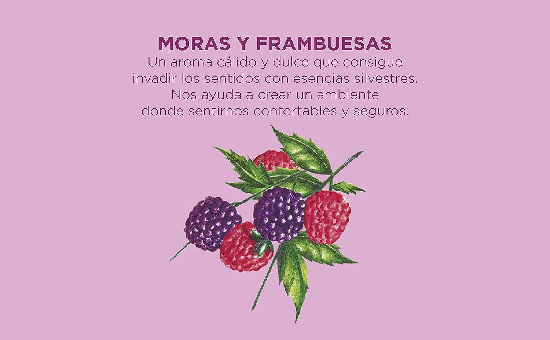 Aroma Moras. Reutilizable CRISTALINAS Pack 2 Vela en Lata Feel Good Fragance Mas de 35h