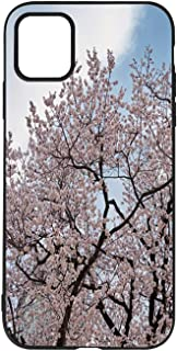 Apricot Blossoms are in Full Bloom in The Spring in Seoul iPhone 11 case,Korea Compatible with iPhone 11