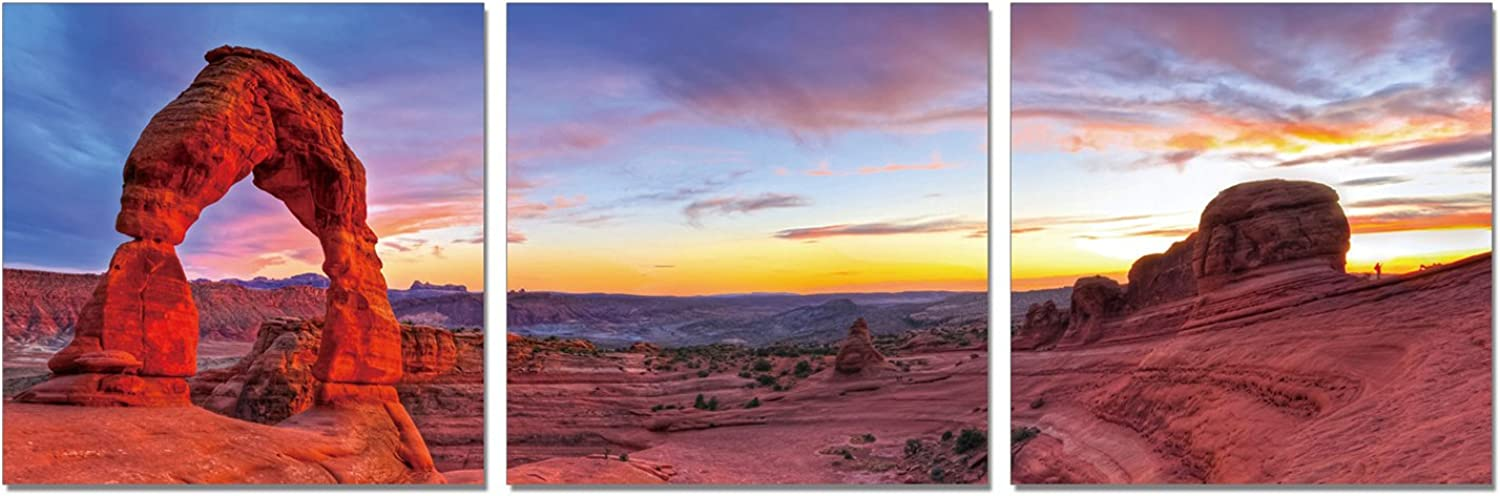 Furinno Senia Wall Mounted Triptych Photography Prints, Delicate Arch, Set of 3