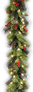 National Tree Company Pre-lit Artificial Christmas Garland | Flocked with Mixed..