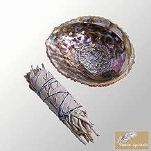 Ensemble: Baton Purificateur Sauge Blanche Moyen et coquille d'ormeau 11-13,5cm (abalone shell 4-5Inch)- Salvia Apiana - WHITE SAGE ML Smudge 5'' (~12-15cm)