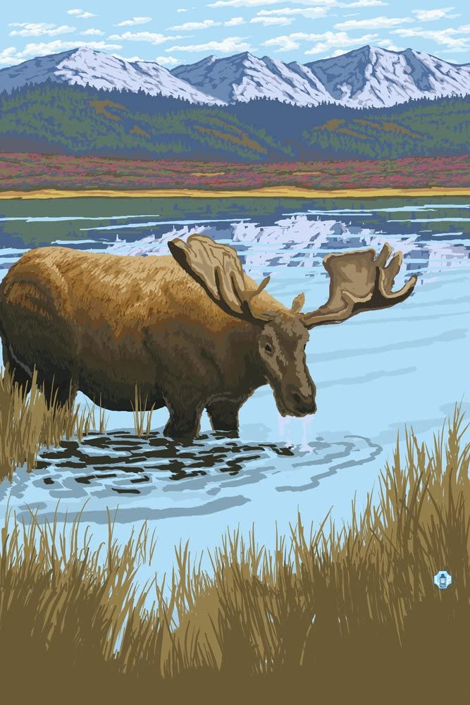 Moose in Don't miss the campaign Lake 36x54 Giclee Limited time for free shipping Gallery Decor Wall Travel Pos Print