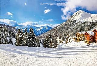Yeele Hintergrund Schneelandschaft, Winterthema, für Kinder und Erwachsene, künstlerische Porträtfotografie, Requisiten, NBK26615, 8x6ft