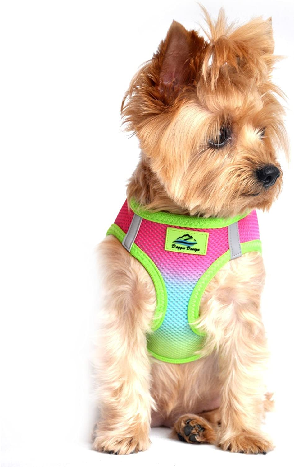 American River Ombre  Rainbow Ultra Choke Free Dog Harness in Size SMALL (Chest 13 16 , for pets weighing 611Lbs.)