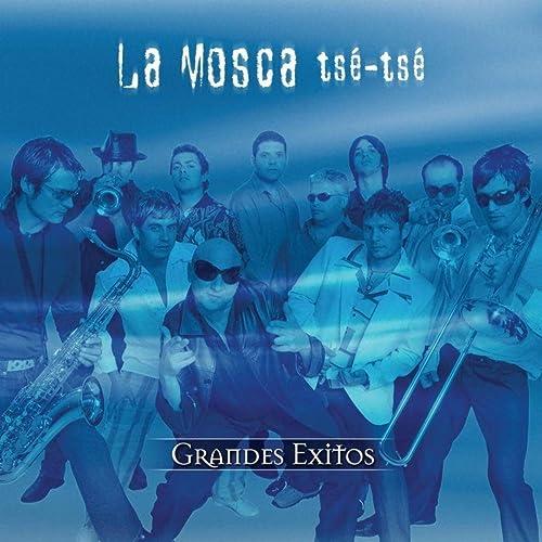 Gira El Ventilador de La Mosca Tse Tse en Amazon Music - Amazon.es