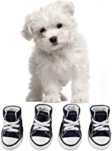 puppy sneakers