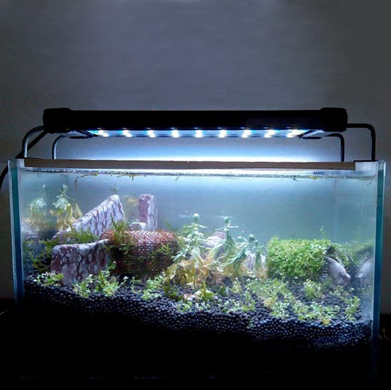 Polarbear's Pet Shop New Aquarium Fish LED Light Lamp Tank Ranking TOP3 SMD Credence