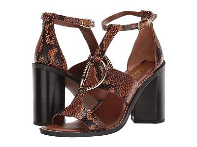 Franco Sarto Dandelion (Brown Leather) Women