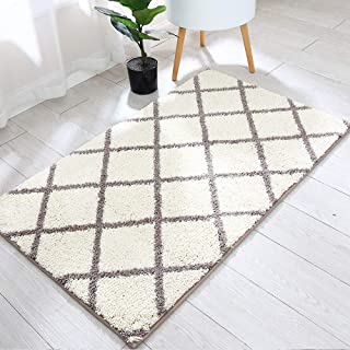 45x27 Inch Accent Rugs Made of 100% Polyester Extra Soft and Non Slip,Specialized in Machine Washable Accent Rug,Khaki