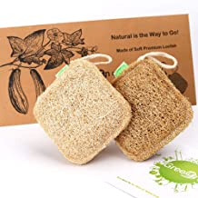 GreeOn 2 PCS Eco Friendly Natural Kitchen Sponges (Made of Loofah, No Odor, Compostable), Organic Fruit Vegetable Scrubber Sponge, Reusable Non Scratch Scouring Pads/Dish Wash Scrub Aponge (Square)