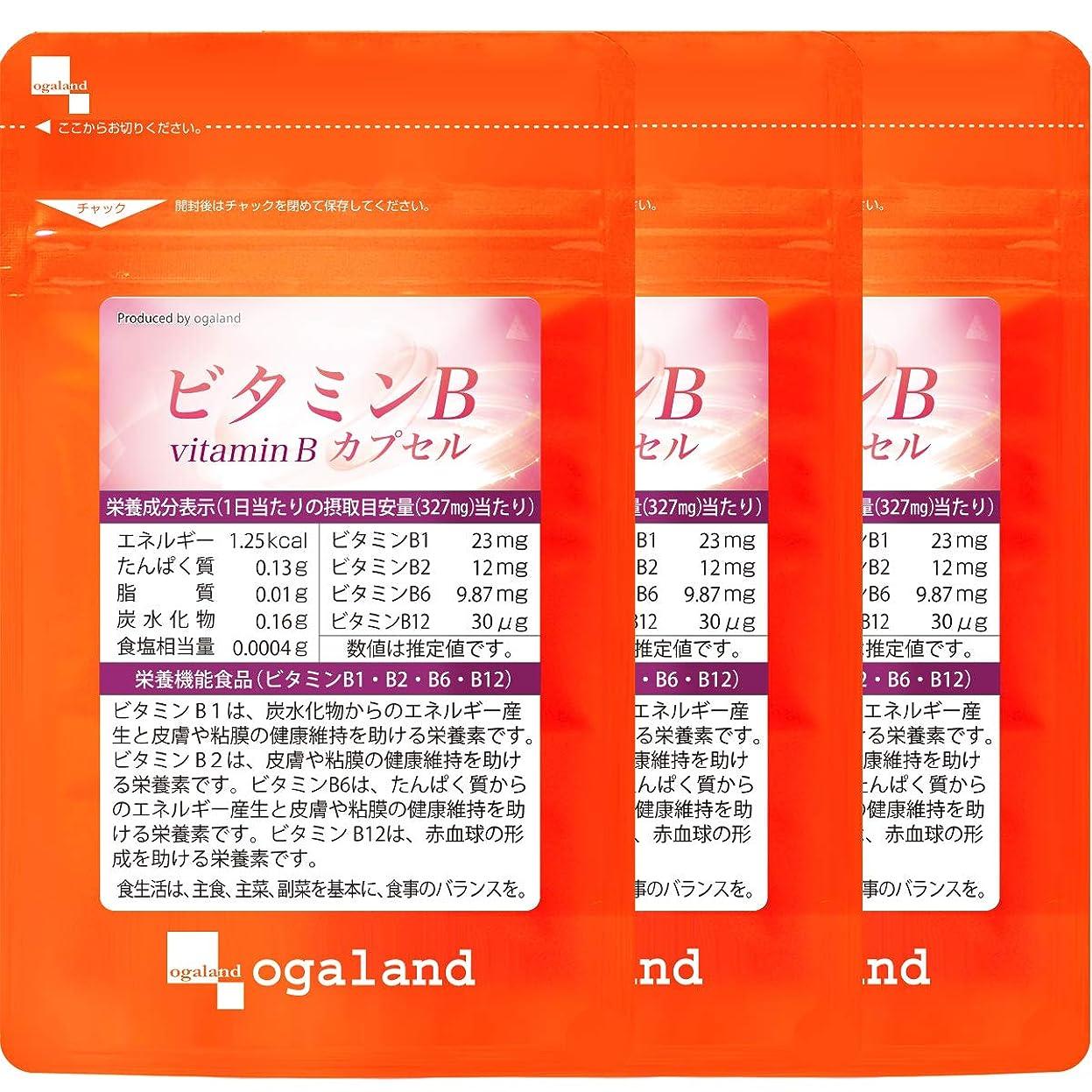 輸血とペグビタミンB カプセル (90カプセル/約3ヶ月分)