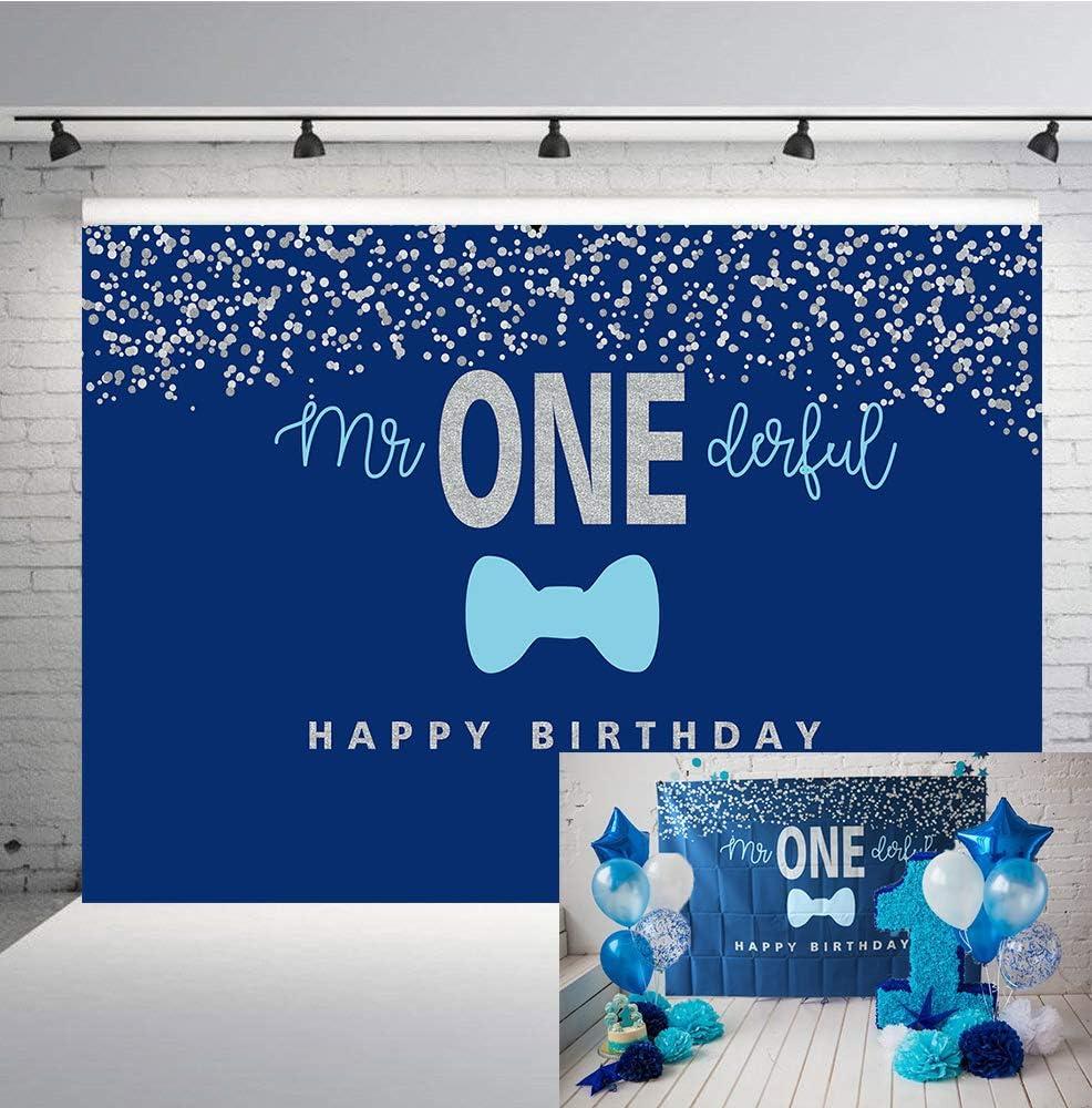 One-derful Onesie Birthday Shirt Mr First Birthday Boy First Birthday Onesie Birthday Onesie