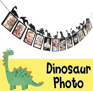 Best dinosaur first birthday Reviews