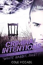 CRIMINAL INTENTIONS: Season Two, Episode Twelve: WHITE RABBIT, PART I (English Edition)