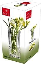 Bormioli Rocco Duemila Flower Vase (Small)