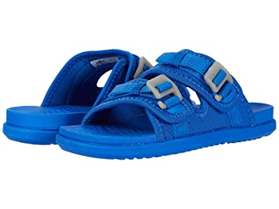 Native Kids Shoes Davis (Little Kid) (Victoria Blue) Kid