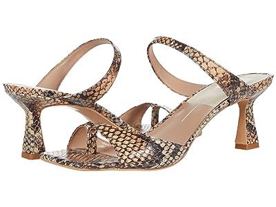 Dolce Vita Tanika (Tan Multi Snake Print Leather) Women