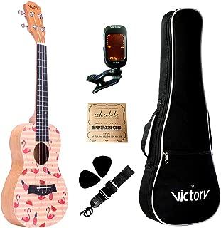 VIVICTORY Concert Painted Ukulele 23 Inch Spruce Mahogany with Beginner kit : Gig Bag,Tuner,Straps,Picks and Nylon String - Flamingo