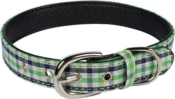 Puccybell Karo Hundehalsband Kariertes Halsband Für Kleine Mittelgroße Und Große Hunde Hb010 L Grün Haustier