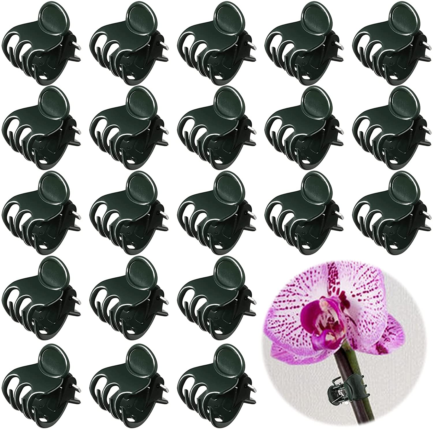 GeiSerailie 200 Pieces Plant Bombing new work Clips Product Garden Vi Orchid Flower