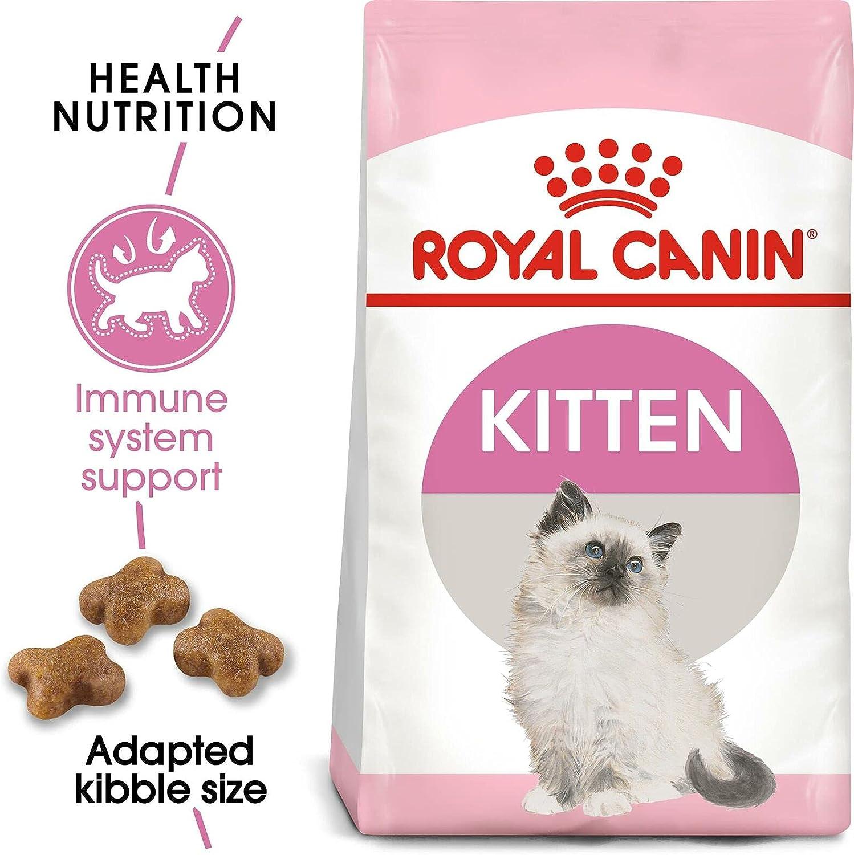 pienso para gatos royal canin