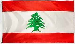 DANF Lebanon Flag 3x5 Foot Lebanese National Flags Polyester with Brass Grommets3 X 5 Ft
