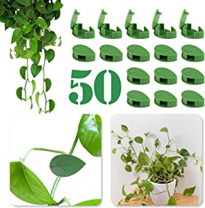 Yi-gog 50PCS Plant Climbing Wall Fixture Clips, Garden Invisible Self-Adhesive Plant Vine Clips Plant Wall Climbing Clips for Supporting Stems Grow Upright, Vines Traction, Cable Wire Fixing