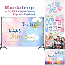 Fanghui Gender Reveal Pink and Blue Backdrop Clouds Moon Boy or Girl Twinkle Twinkle Little Star Background Cake Table Party Banner and Dress-up Photo Studio Props DIY Kit