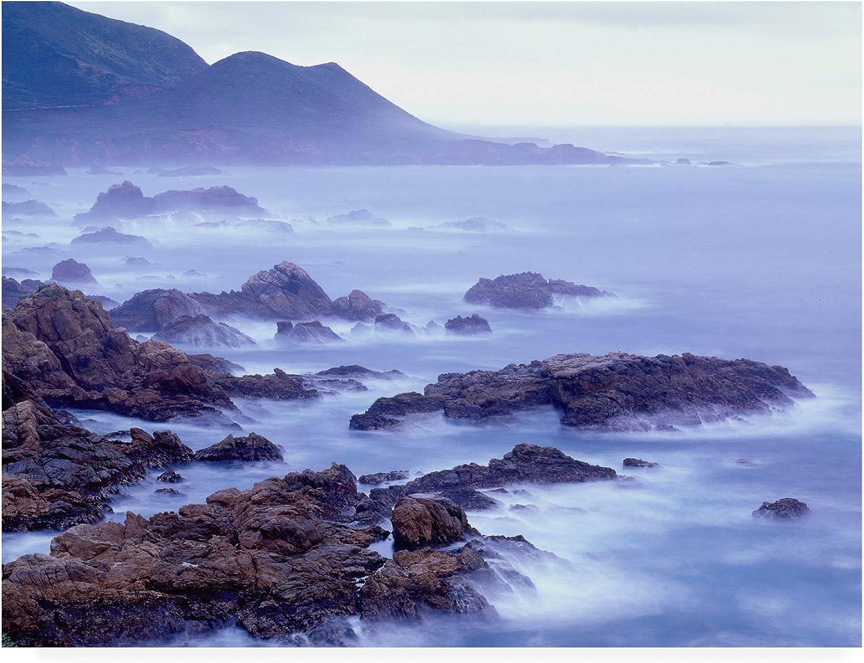 Trademark Fine Art Surf and Foothills Big Sur California by Monte Nagler, 14x19