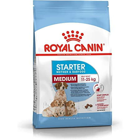 Royal Canin C-08445 S.N. Maxi Starter - 4 Kg: Amazon.es ...