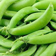 Sugar Lace II Snap Pea Garden Pea Seeds (Sugar Snap), 50+ Premium Heirloom Seeds, ON SALE!, (Isla's Garden Seeds), Non Gmo Organic, 90% Germination Rates, Highest Quality Seeds, 100% Pure