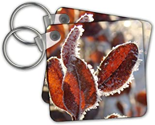 Hoar Frost on Winter Leaves 3dRose Cassie Peters Photography T-Shirts