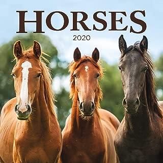 Turner Photo Horses 2020 12X12 Photo Wall Calendar (20998940025)