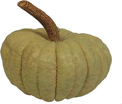 Hickory Manor House Long Stem Pumpkin for Home Decor, Sage Green