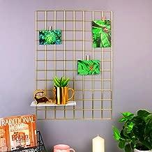 NAYAB Gold DIY Multifunction Metal Grid Without Basket Wall Mounted Ins Mesh Art & Craft Photo Display Organizer Panel, Memo Bulletin Board (45 x 65cm,GOLD)