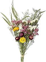 #N/a Hastes naturais flores secas pinha algodão eucalipto margarida flores secas decorativas mini buquê de artesanato flor...