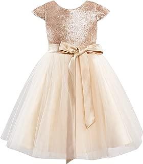 Champagne Sequin Tulle Wedding Flower Girl Dress Cap Sleeves