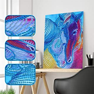 Diamond Painting Kits for Adults, Special Shaped Diamond Painting DIY 5D Partial Drill Cross Stitch Kits Crystal R